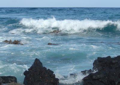 Northwest Hawaiian Islands Marine Sanctuary