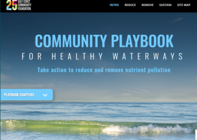 Water Quality Playbook
